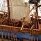 détail maquette de bateau, voilier, runabout HMS Endeavour (Platinum) - 73 cm Premier Ship Models