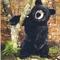 Ours noir assis - 51 cm 163.20 € ttc