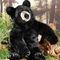 Grand ours noir - 70 cm 320.40 € ttc