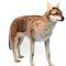 Loup à 4 pattes géant 105 cm - 6726 753.84 € ttc