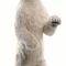 Ours polaire géant dressé 260 cm - 4013 2196.72 € ttc
