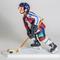Le hockeyeur sur glace 278.40 € ttc