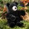 Jeune ours noir 26 cm 91.20 € ttc