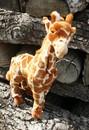 Anima Girafe - 38 cm