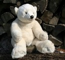 Anima Polar bear - 70 cm