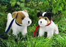 Kosen Chiot  Jack Russel Terrier  debout 21 cm