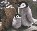 Kosen Pingouin gris