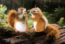 Kosen Squirrel of Siberia - 14 cm