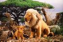Kosen Lion assis - 29 cm