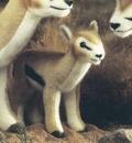Kosen Gazelle de Thomson foan - 28 cm