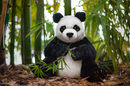 Kosen Panda  Maya  - 39 cm